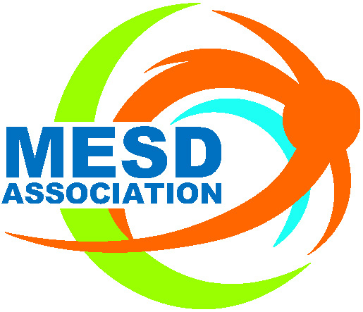 "MESD'17: ""Sustainable Development Goals:  What Can MNEs Do?"""